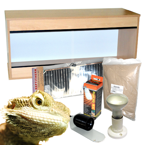 100cm Bearded Dragon Starter Kit
