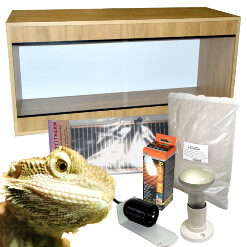 120cm Bearded Dragon Starter Kit