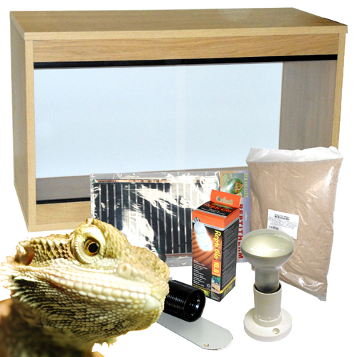 80cm Bearded Dragon Starter Kit